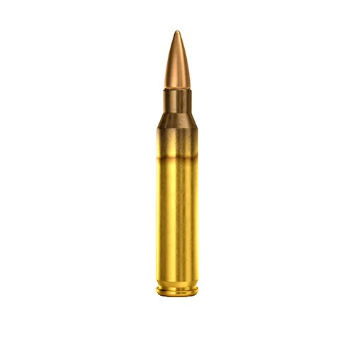 M193 5.56 55 Grain FMJ 20 Rounds Maxx Tech